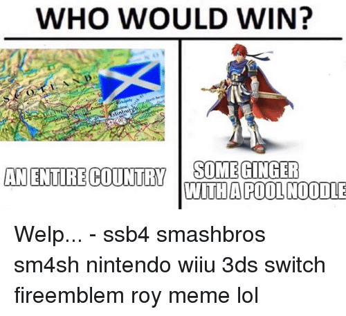 wiiu: WHO WOULD WIN?  ANENTIRE COUNY OMEGINGER  WITHA POOL NOODLE Welp... - ssb4 smashbros sm4sh nintendo wiiu 3ds switch fireemblem roy meme lol