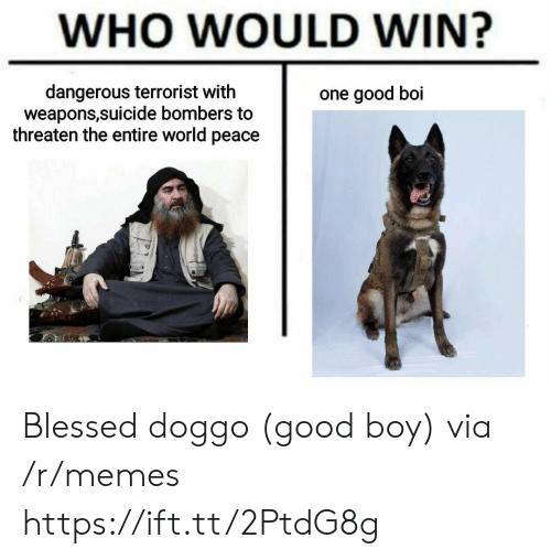 threaten: WHO WOULD WIN?  dangerous terrorist with  weapons,suicide bombers to  threaten the entire world peace  one good boi Blessed doggo (good boy) via /r/memes https://ift.tt/2PtdG8g