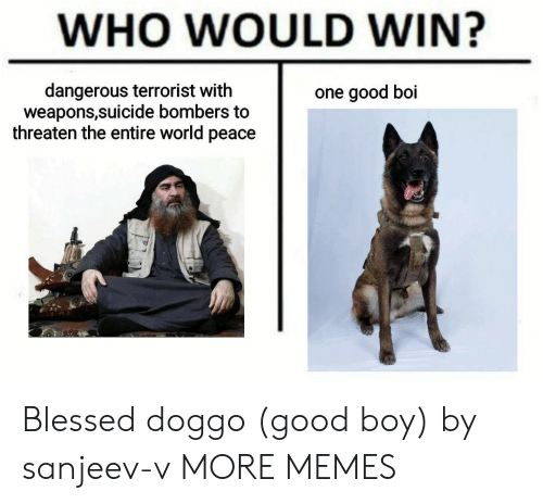 threaten: WHO WOULD WIN?  dangerous terrorist with  weapons,suicide bombers to  threaten the entire world peace  one good boi Blessed doggo (good boy) by sanjeev-v MORE MEMES