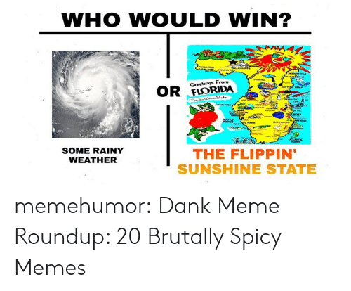 Dank, Meme, and Memes: WHO WOULD WIN?  Greetinqs From  OR ORIDA  SOME RAINY  WEATHER  THE FLIPPIN  SUNSHINE STATE memehumor:  Dank Meme Roundup: 20 Brutally Spicy Memes