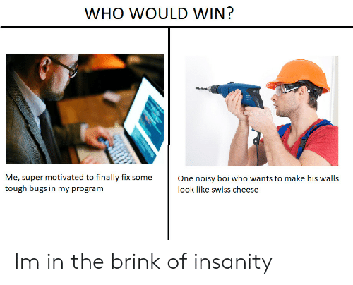 brink: WHO WOULD WIN?  Me, super motivated to finally fix some  tough bugs in my program  One noisy boi who wants to make his walls  look like swiss cheese Im in the brink of insanity