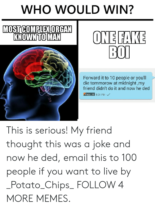 Complex, Dank, and Fake: WHO WOULD WIN?  MOST COMPLEX ORGAN  KNOWN TO MAN  ONE FAKE  ВOО  Forward it to 10 people or youll  die tommorow at midnight my  friend didn't do it and now he ded  Voda.. N 8.31 PM This is serious! My friend thought this was a joke and now he ded, email this to 100 people if you want to live by _Potato_Chips_ FOLLOW 4 MORE MEMES.