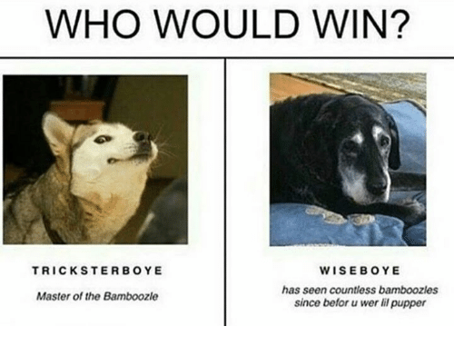 Dank Memes, Who, and Master: WHO WOULD WIN?  WISEBOYE  has seen countless bamboozles  since befor wer li pupper  TRICKSTERBOYE  Master of the Bamboozle