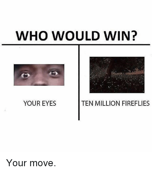 Your Moves: WHO WOULD WIN?  YOUR EYES  TEN MILLION FIREFLIES Your move.