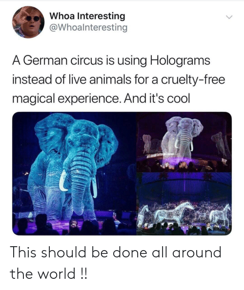 Cruelty: Whoa Interesting  @Whoalnteresting  A German circus is using Holograms  instead of live animals for a cruelty-free  magical experience. And it's cool This should be done all around the world !!