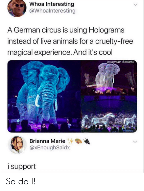 Animals, Instagram, and Cool: Whoa Interesting  @Whoalnteresting  A German circus is using Holograms  instead of live animals for a cruelty-free  magical experience. And it's cool  instagram: @colorful  Brianna Marie  @xEnoughSaidx  isupport So do I!