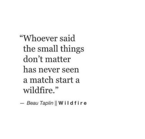 """Match, Never, and Wildfire: """"Whoever said  the small things  don't matter  has never seen  a match start a  wildfire.""""  - Beau Taplin 