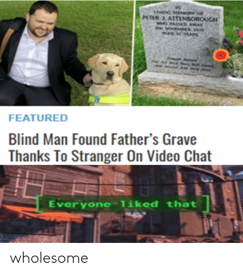 Wholesome: wholesome