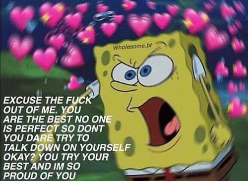 Best, Okay, and Proud: Wholesome.bf  EXCUSE THE FUC  OUT OF ME. YOU  ARE THE BEST NO ONE  IS PERFECT SO DONT  YOU DARE TRY TO  TALK DOWN ON YOURSELF  OKAY? YOU TRY YOUR  BEST AND IM SO  PROUD OF YOU