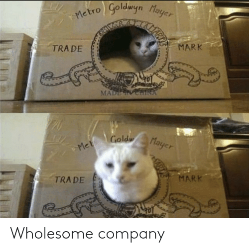 Wholesome: Wholesome company