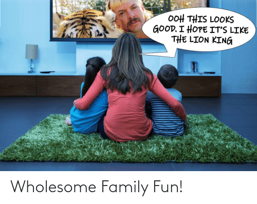 Wholesome Family: Wholesome Family Fun!