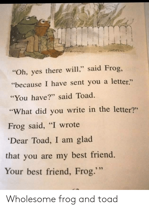 toad: Wholesome frog and toad