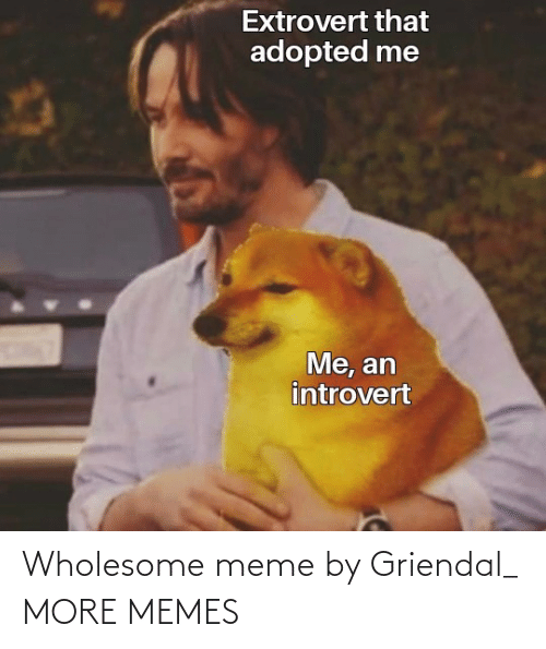 Wholesome: Wholesome meme by Griendal_ MORE MEMES