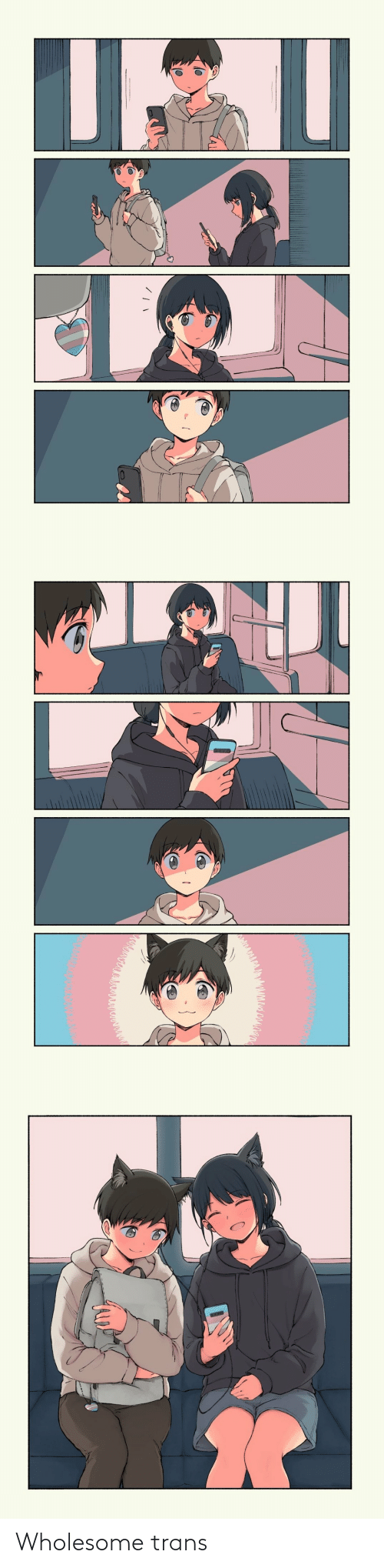 Wholesome: Wholesome trans