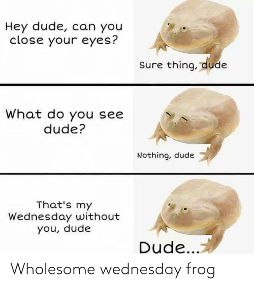frog: Wholesome wednesday frog