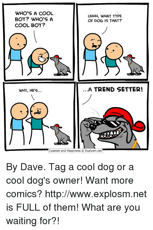 cool boys: WHO'S A COOL  BOY? WHO'S A  COOL BOY?  UHHH, WHAT TYPE  OF DOG IS THAT?  WHY, HE'S...  A TREND SETTER!  .cyanide and Happiness © Explosm.net| By Dave. Tag a cool dog or a cool dog's owner! Want more comics? http://www.explosm.net is FULL of them! What are you waiting for?!