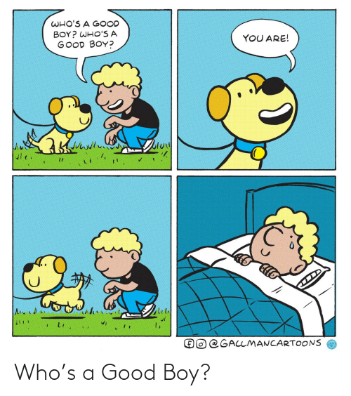 A Good: WHO'S A GOOD  BOY? WHO'S A  GOOD BOY?  YOU ARE!  @GALLMANCARTOONS Who's a Good Boy?
