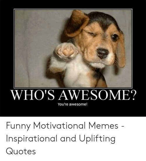 Uplifting Quotes: WHO'S AWESOME?  You're awesome! Funny Motivational Memes - Inspirational and Uplifting Quotes
