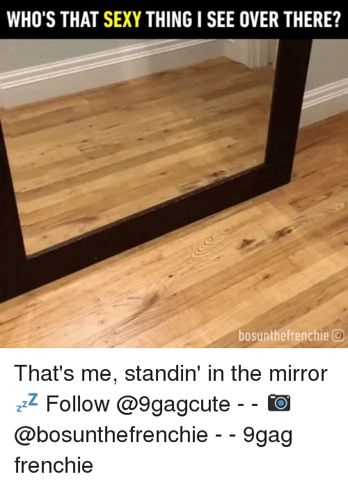 Frenchie: WHO'S THAT SEXY THING I SEE OVER THERE?  bosunthefrenchie O That's me, standin' in the mirror 💤 Follow @9gagcute - - 📷@bosunthefrenchie - - 9gag frenchie