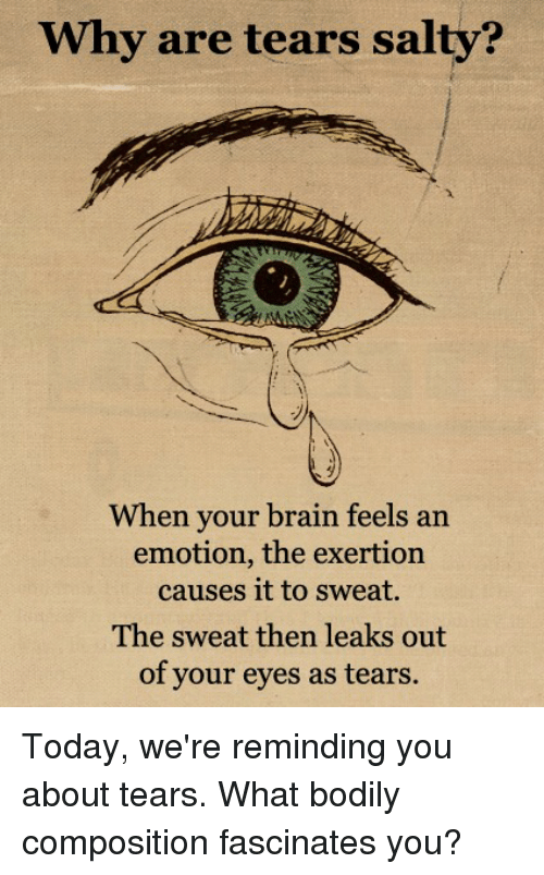 fascination: Why are tears salty?  When your brain feels an  emotion, the exertion  causes it to sweat.  The sweat then leaks out  of your eyes as tears. Today, we're reminding you about tears.  What bodily composition fascinates you?