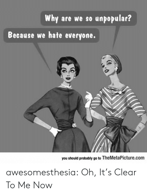themetapicture: Why are we so unpopular?  Because we hate everyone.  you should probably go to TheMetaPicture.com awesomesthesia:  Oh, It's Clear To Me Now