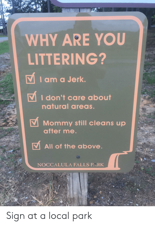 All of The, Local, and Why: WHY ARE YOU  LITTERING?  VIam a Jerk.  I don't care about  natural areas.  Mommy still cleans up  after me.  All of the oabove.  NOCCALULA FALLS PARK Sign at a local park
