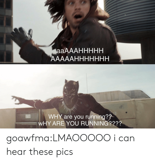 Target, Tumblr, and Blog: WHY are you running??  WHY ARE YOU RUNNING?2?? goawfma:LMAOOOOO i can hear these pics