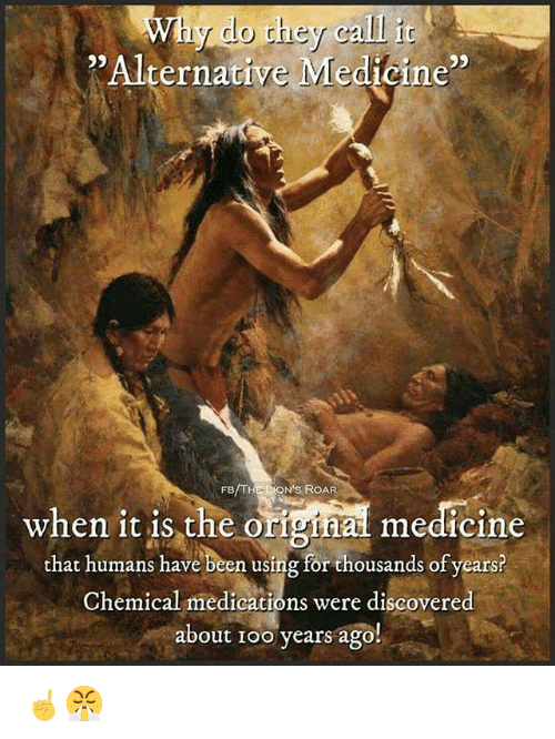 "Memes, Medicine, and Been: Why do they calli  "" Alternative Medtoine""  95  FB/THE LON'S ROAR  when it is the original medicine  that humans have been using for thousands of years?  when 1t 1s the orighal medicine  Chemical medications were discovered  about Ioo years ago!  ical medications were discovere ☝️😤"