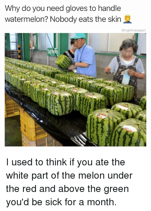 Melonism: Why do you need gloves to handle  watermelon? Nobody eats the skin  @highfiveexpert I used to think if you ate the white part of the melon under the red and above the green you'd be sick for a month.