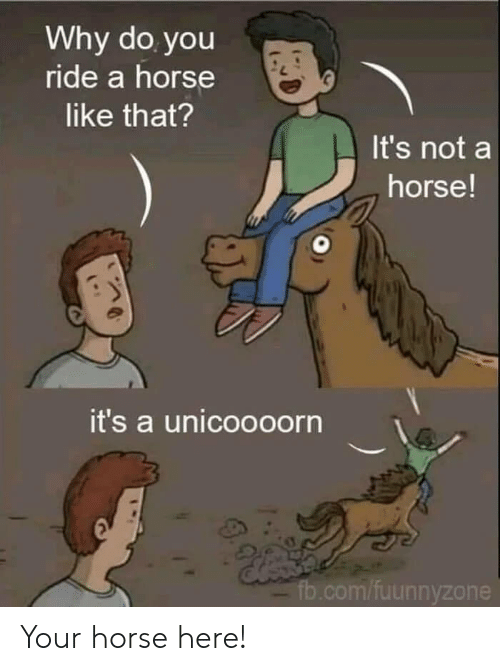 fb.com, Horse, and Com: Why do you  ride a horse  like that?  It's not a  horse!  it's a unicoooorn  fb.com/fuunnyzone Your horse here!