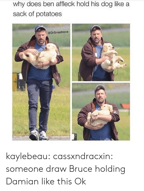 Holding: why does ben affleck hold his dog like a  sack of potatoes  @DrSmashlove kaylebeau:  cassxndracxin:  someone draw Bruce holding Damian like this   Ok