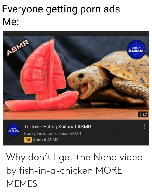 Chicken: Why don't I get the Nono video by fish-in-a-chicken MORE MEMES