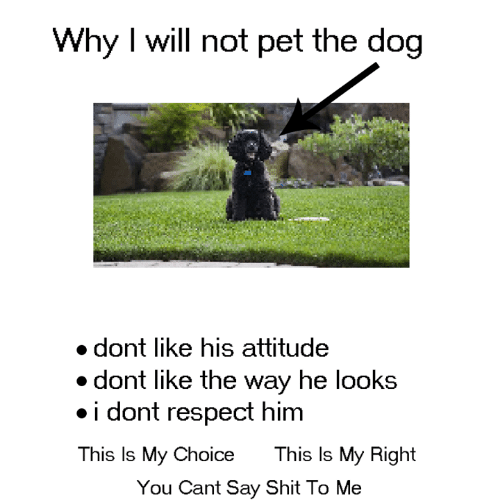 Dank, Respect, and Shit: Why I will not pet the dog  dont like his attitude  dont like the way hel  ooks  .i dont respect himm  This Is My Choice  This ls My Right  You Cant Say Shit To Me