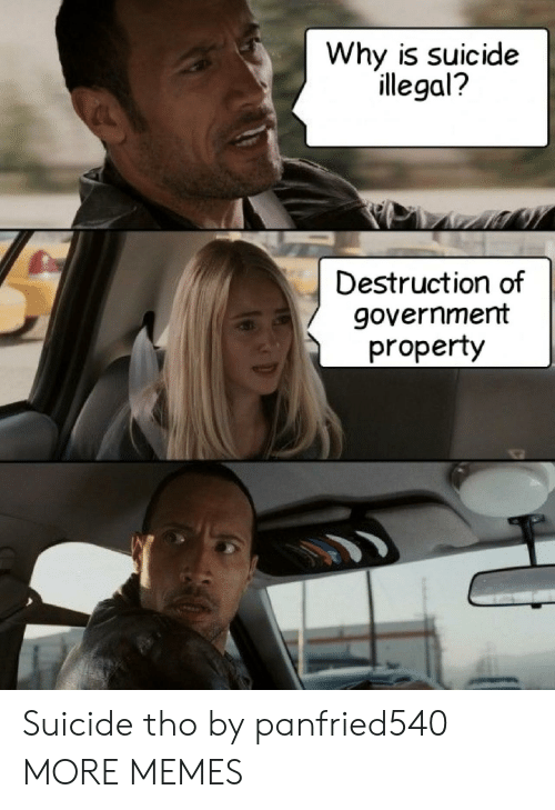 destruction: Why is suicide  illegal?  Destruction of  government  property Suicide tho by panfried540 MORE MEMES