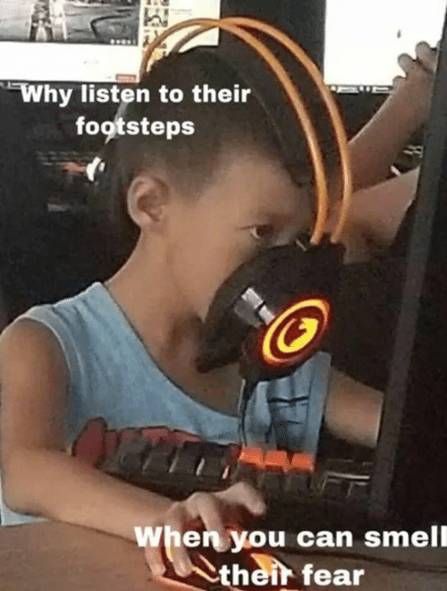 Memes, Smell, and Fear: Why listen to their  footsteps  When you can smell  their fear