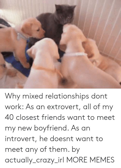 New Boyfriend: Why mixed relationships dont work: As an extrovert, all of my 40 closest friends want to meet my new boyfriend. As an introvert, he doesnt want to meet any of them. by actually_crazy_irl MORE MEMES