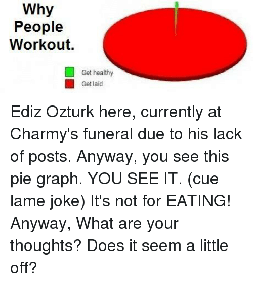 What Ares, Pie, and Why: Why  People  Workout.  Get healthy  Get laid Ediz Ozturk here, currently at Charmy's funeral due to his lack of posts.  Anyway, you see this pie graph. YOU SEE IT. (cue lame joke) It's not for EATING!  Anyway, What are your thoughts? Does it seem a little off?