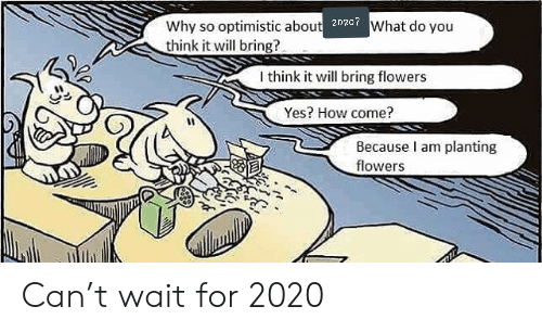 Flowers, Optimistic, and How: Why so optimistic about 202c7What do you  think it will bring?  I think it will bring flowers  Yes? How come?  Because I am planting  flowers Can't wait for 2020