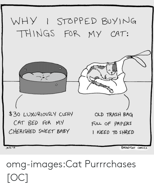 Omg, Trash, and Tumblr: WHY STOPPED BuyING  THINGS FOR MY CAT:  $30 LUXURIOUSLy cuSHy  OLD TRASH BAG  FULL OF PAPERS  I NEED TO SHRED  CHERISHED SWEET BABY  SND 1  EASKETCAT CoMICS omg-images:Cat Purrrchases [OC]