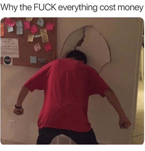 Money, Why, and Everything: why the FOCK everything cost money