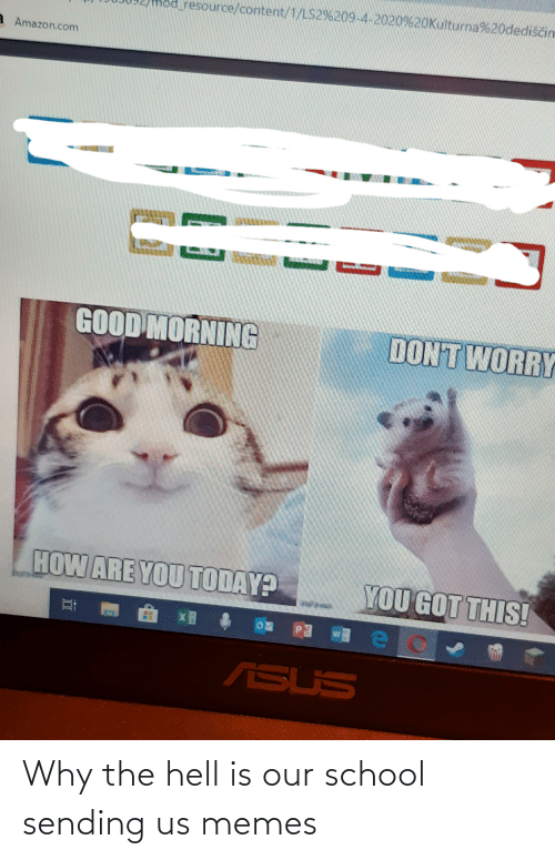 Why The Hell: Why the hell is our school sending us memes