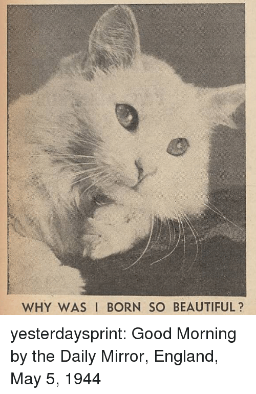 daily mirror: WHY WAS I BORN SO BEAUTIFUL? yesterdaysprint:  Good Morning by the Daily Mirror, England, May 5, 1944