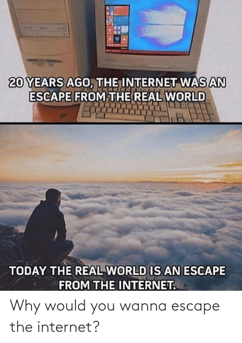 the internet: Why would you wanna escape the internet?