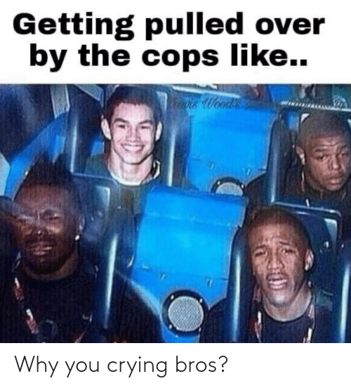 bros: Why you crying bros?