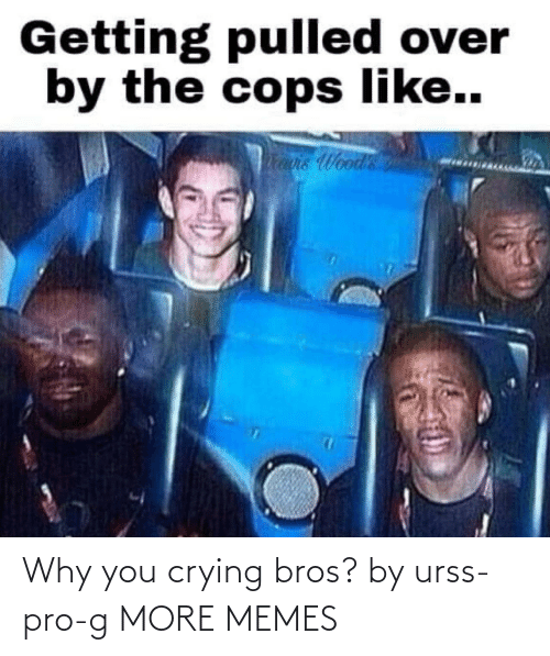 bros: Why you crying bros? by urss-pro-g MORE MEMES