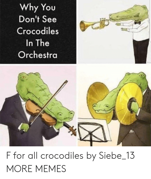 Dank, Memes, and Target: Why You  Don't See  Crocodiles  In The  Orchestra F for all crocodiles by Siebe_13 MORE MEMES