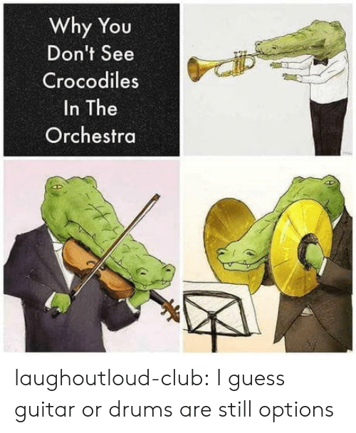 Club, Tumblr, and Blog: Why You  Don't See  Crocodiles  In The  Orchestra laughoutloud-club:  I guess guitar or drums are still options