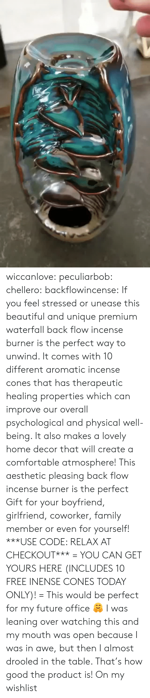Leaning: wiccanlove:  peculiarbob: chellero:   backflowincense:  If you feel stressed or unease this beautiful and unique premium waterfall back flow incense burner is the perfect way to unwind. It comes with 10 different aromatic incense cones that has therapeutic healing properties which can improve our overall psychological and physical well-being. It also makes a lovely home decor that will create a comfortable atmosphere! This aesthetic pleasing back flow incense burner is the perfect Gift for your boyfriend, girlfriend, coworker, family member or even for yourself! ***USE CODE: RELAX AT CHECKOUT*** = YOU CAN GET YOURS HERE (INCLUDES 10 FREE INENSE CONES TODAY ONLY)! =   This would be perfect for my future office 🤗   I was leaning over watching this and my mouth was open because I was in awe, but then I almost drooled in the table. That's how good the product is!   On my wishlist