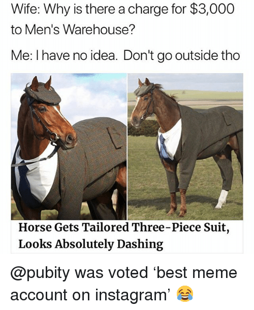 Warehouse: Wife: Why is there a charge for $3,000  to Men's Warehouse?  Me: I have no idea. Don't go outside thoo  Horse Gets Tailored Three-Piece Suit  Looks Absolutely Dashing @pubity was voted 'best meme account on instagram' 😂