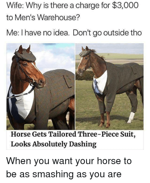 Warehouse: Wife: Why is there a charge for $3,000  to Men's Warehouse?  Me: I have no idea. Don't go outside tho  Horse Gets Tailored Three-Piece Suit  Looks Absolutely Dashing When you want your horse to be as smashing as you are